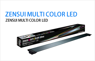 ZENSUI MULTI COLOR LED