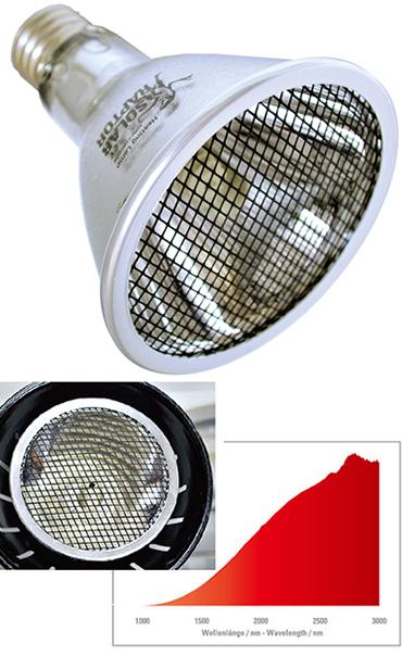 ソーラーラプターヒーティングランプ(遠赤外線ランプ)