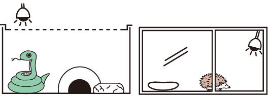 ストロング ムーンライトランプの設置例